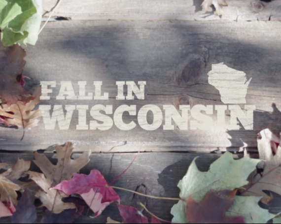 Fall In Wisconsin